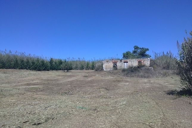 Land for sale in Foz Do Arelho, Leiria