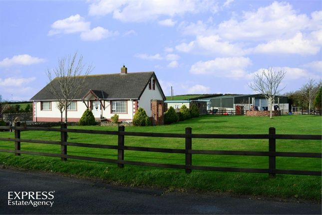 Thumbnail Detached house for sale in Crew Road, Ardglass, Downpatrick, County Down