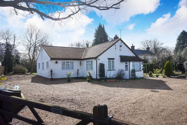 Thumbnail Detached bungalow for sale in Yarmouth Road, Broome, Bungay