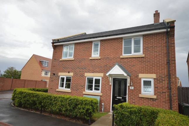 Thumbnail Detached house for sale in Victoria Grove, Whitley Bay