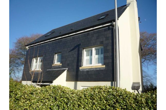 Thumbnail Detached house for sale in Well Park Place, Dartmouth