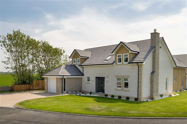 Thumbnail Detached house for sale in Moss Road, Falkirk