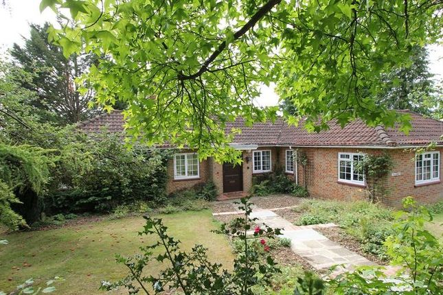 Thumbnail Bungalow to rent in Stylecroft Road, Chalfont St. Giles