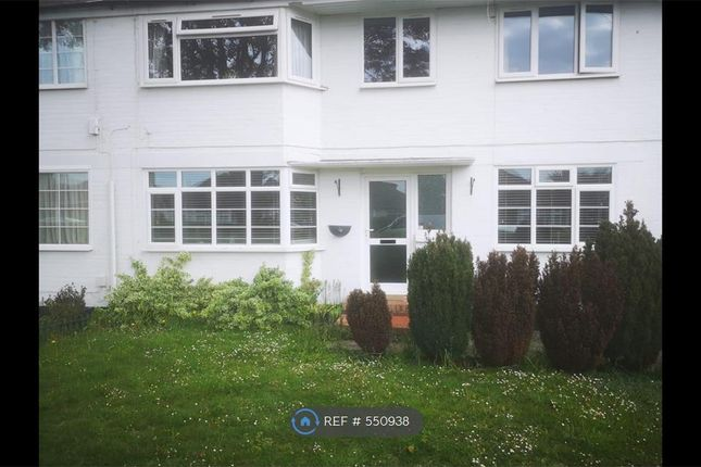 Thumbnail Flat to rent in Shirley Drive, Worthing
