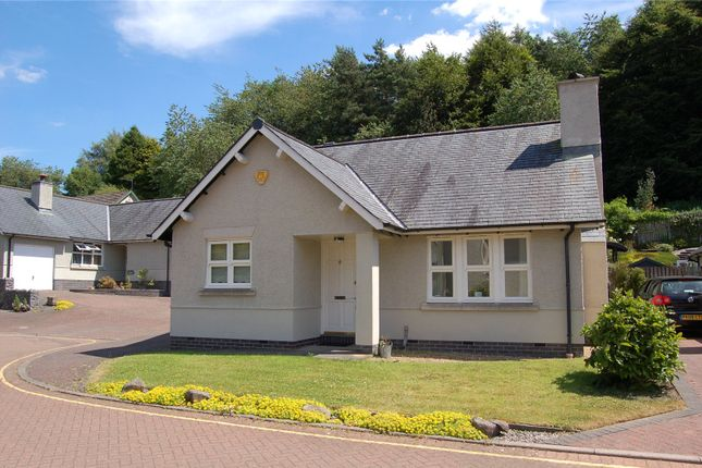 Thumbnail Detached bungalow to rent in 42 Kirkbie Green, Kendal, Cumbria