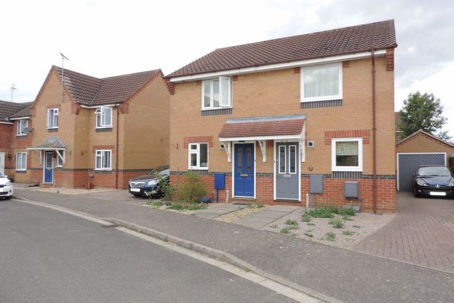 Thumbnail Semi-detached house to rent in Cowslip Drive, Deeping St James, Peterborough