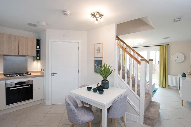 """2 bedroom terraced house for sale in """"The Bambridge Mid"""" at Blantyre, Glasgow"""