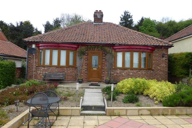Thumbnail Bungalow to rent in Gypsy Lane, Nunthorpe, Middlesbrough