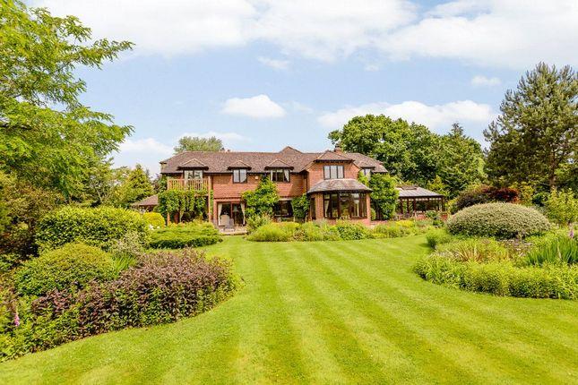Thumbnail Detached house to rent in Hill Farm Lane, Binfield, Bracknell, Berkshire