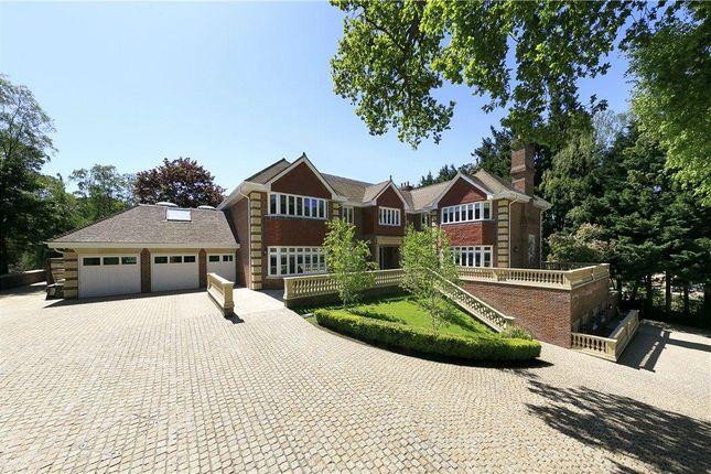 Thumbnail Detached house for sale in Horseshoe Ridge, St George's Hill, Weybridge, Surrey