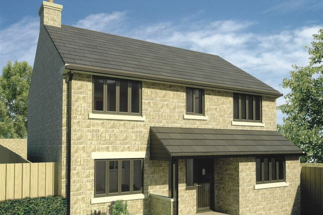 Thumbnail Detached house for sale in Ash Close, Wells