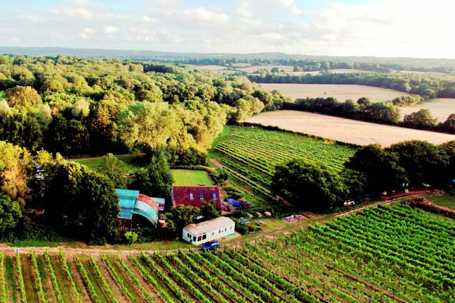 Thumbnail Farm for sale in Staplecross, Robertsbridge, East Sussex