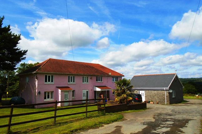 Thumbnail Equestrian property for sale in Gelli Gelynog, Carway, Carmarthenshire, West Wales