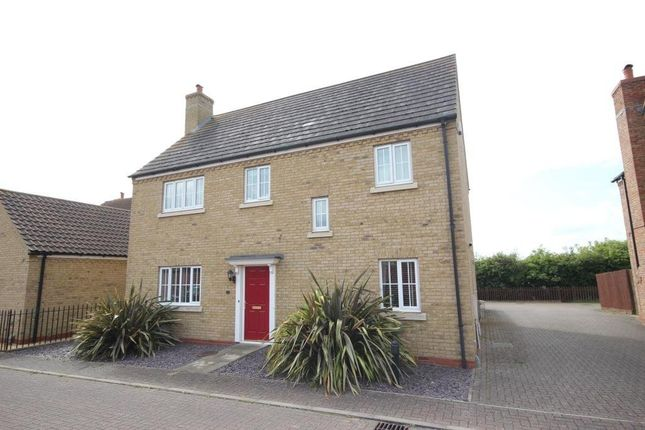 Thumbnail Detached house for sale in Meadow Lane, Haddenham, Ely