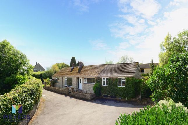 Thumbnail Bungalow for sale in Winterbourne Abbas, Dorset