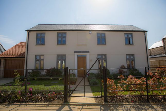 Thumbnail Detached house for sale in Ash Place, Berry Close, Stretham, Ely