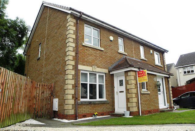 Thumbnail Semi-detached house for sale in Birdsfield Street, Hamilton