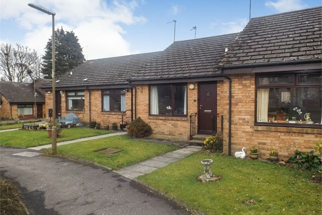 Thumbnail Terraced bungalow for sale in Springbank Gardens, Falkirk