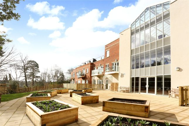 Thumbnail Flat for sale in Woodland View, Lynwood Village, Rise Road, Ascot