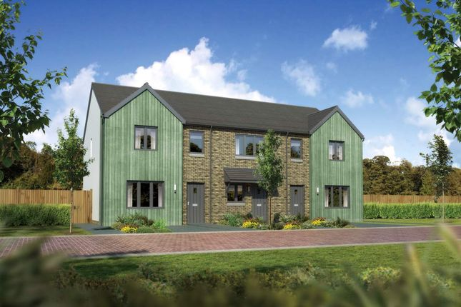 "3 bedroom terraced house for sale in ""Argyll"" at Covenanter Way, Alford"
