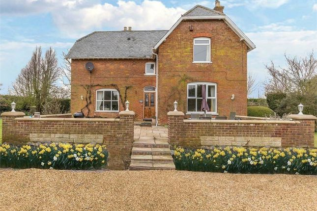 Thumbnail Detached house for sale in Blackbarn Road, Gedney Drove End, Spalding, Lincolnshire