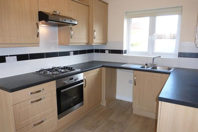 Thumbnail Property to rent in Vernon Crescent, Exeter