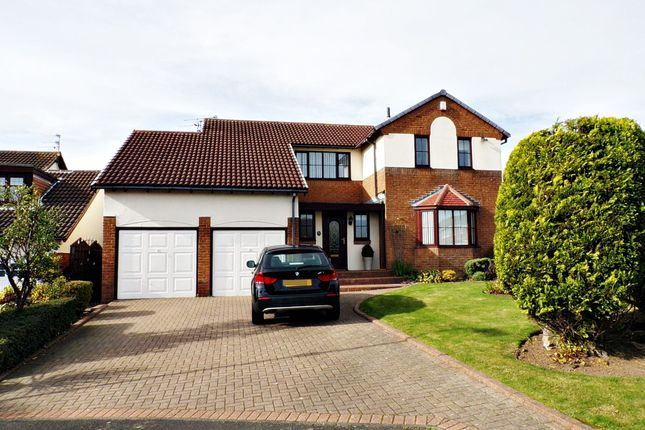 Thumbnail Detached house for sale in Speedwell Court, Ashington