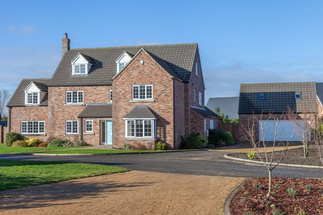 Thumbnail Detached house for sale in The Oaks, Wicklewood, Wymondham