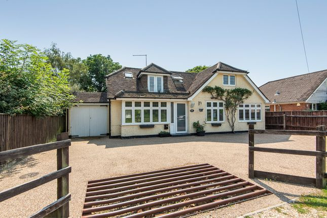 Thumbnail Detached bungalow for sale in Balmer Lawn Road, Brockenhurst
