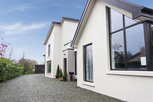 Thumbnail Detached house for sale in Station Road, Maghera, County Londonderry