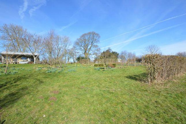 Gardens of Bryn Eithin Road, Afonwen, Mold CH7