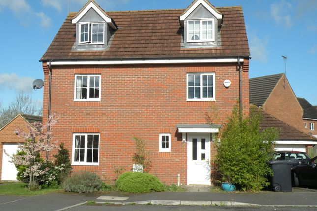 Thumbnail Detached house to rent in Walker Grove, Hatfield, Hertfordshire