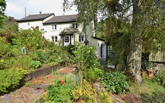 Thumbnail Cottage for sale in Pennymoor, Tiverton