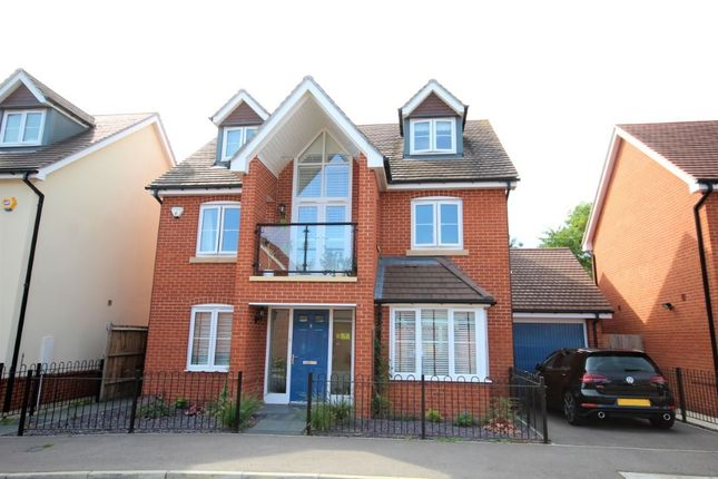 Thumbnail Detached house to rent in Bluebell Crescent, Woodley, Reading