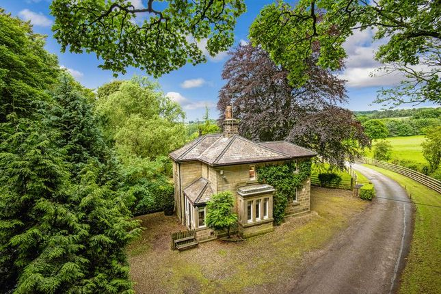 Thumbnail Detached house for sale in Pateley Bridge Road, Burnt Yates, Harrogate