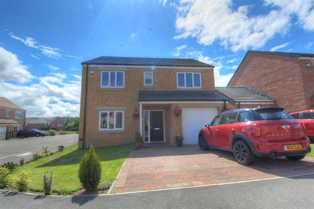 Thumbnail Detached house for sale in Hurdwick, Sunderland