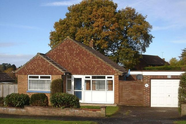 Thumbnail Bungalow to rent in Yarnhams Close, Four Marks, Alton