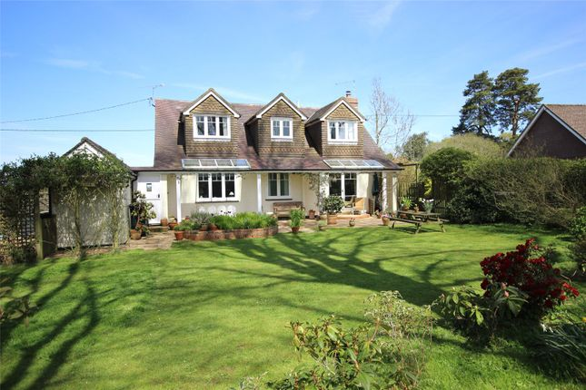 Picture No. 34 of Wield Road, Medstead, Alton, Hampshire GU34