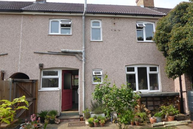 Thumbnail Terraced house to rent in Kathie Road, Bedford