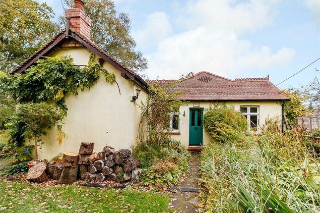 Thumbnail Detached bungalow for sale in Lucas Green, West End, Woking, Surrey