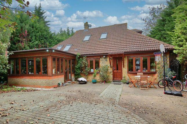 Thumbnail Bungalow to rent in Daybrook Road, Merton Park