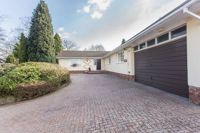 Thumbnail Bungalow for sale in 3/4 Bedroom Bungalow, Aylestone Hill, Hereford