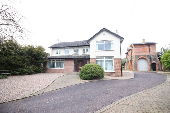 Thumbnail Detached house to rent in The Flats, Rashee Road, Ballyclare