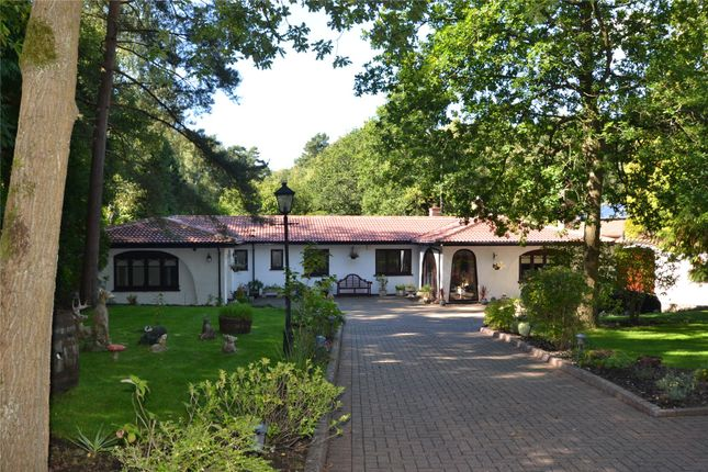 Thumbnail Detached house for sale in Hollybush Ride, Finchampstead, Wokingham, Berkshire