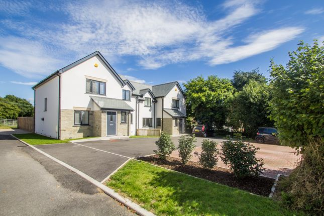 Thumbnail Semi-detached house for sale in Summer Green, Lamerton, Tavistock
