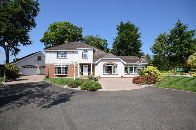 Thumbnail Detached house for sale in Ashbrook Park, Limavady