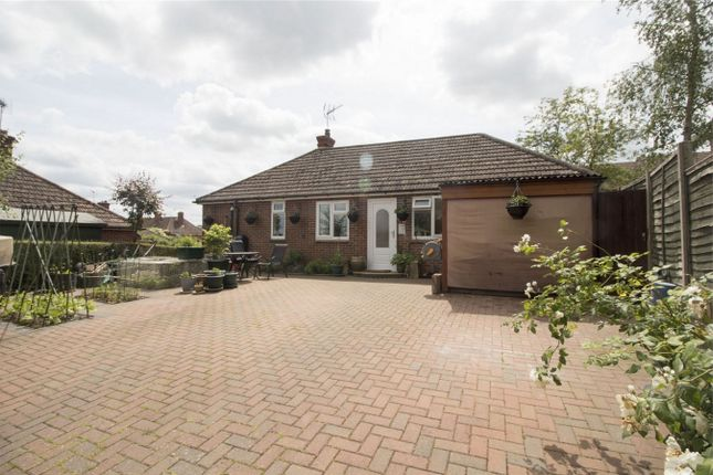 Thumbnail Semi-detached bungalow for sale in Buffins Road, Odiham, Hook