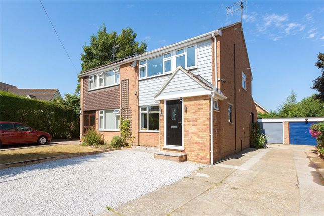 Thumbnail 4 bed semi-detached house for sale in St Marys Close, Great Baddow, Chelmsford, Essex