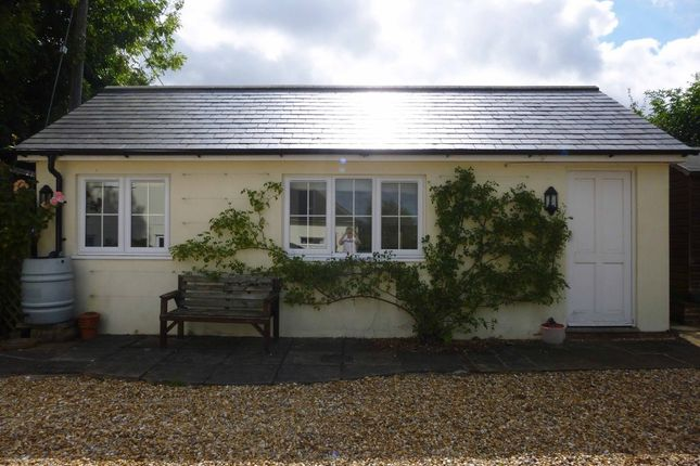 Thumbnail Bungalow to rent in Newton Valence, Nr. Alton, Hampshire