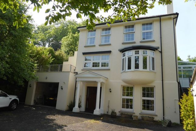 Thumbnail Detached house for sale in Edgcumbe Road, Lostwithiel